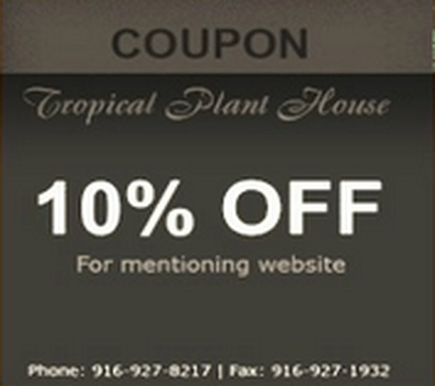 The Tropical Plant House